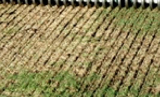 Slit Seeding