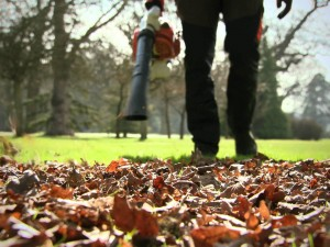 leaf blower-1